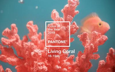 Colores del año, 2019